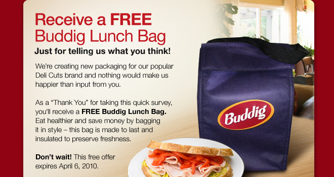 buddig-lunch-bag.jpg