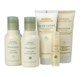 aveda-skin-hair-set.jpg
