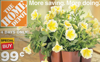 home-depot-99c-flowers.png