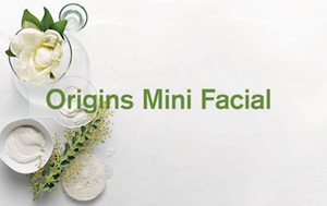 Origins-Mini-Facial.png